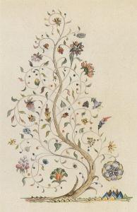 amalion tree