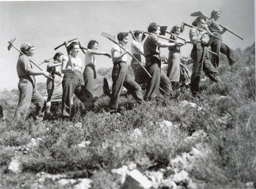 צילום אברהם מלבסקי מעלה החמישה 1937 קטלוג קרן קיימת ומצלמת